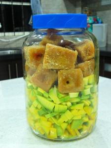 mango Enzyme Day1